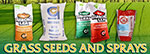 Grass Seeds now in Stock